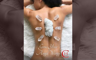 Grow Your Angel Wings!
