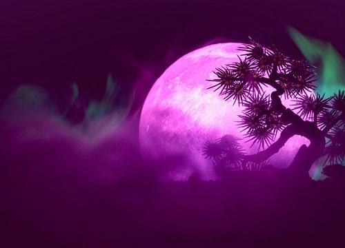 Super Pink Moon!