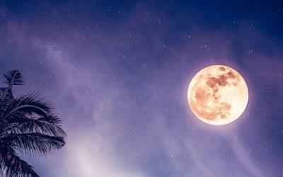 Sturgeon Moon: Full Moon in Aquarius